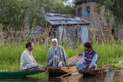 Unidentified vegetable sellers taking their produce to the floating market early in the morning on Dal Lake in Srinagar, Kashmir. royalty free stock photography