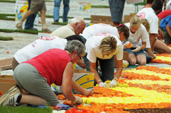 The Flower Carpet 2012 Stock Images