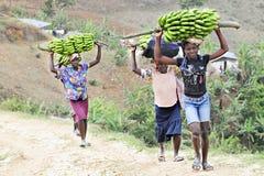 Unidentified Women Hauling Bananas Royalty Free Stock Image