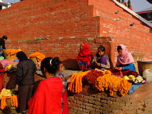 Unidentified women are making worship flowers in Bhaktapur Durbar Square area, Kathmandu, Nepal. Stock Images