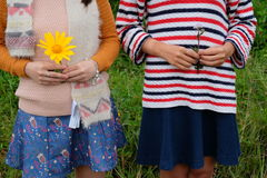 Unidentified young girls with wild flowers on hands. Royalty Free Stock Image