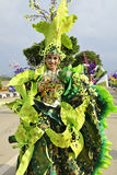 Uniek kostuum met groen orchideethema Stock Afbeelding