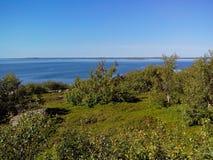 Unieke aard van Groot Zayatskyi-eiland, dat deel van Solovetsky-archipel, Witte overzees, Rusland uitmaakt stock fotografie