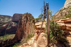 Unieke berg genoemd Engelen die in Zion National Park landen stock foto