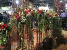 Unieke bloemen op stok Stock Foto