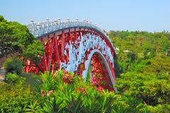 Unieke brug die met aard wordt omringd stock foto's