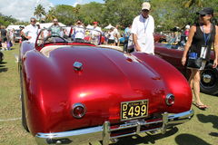 Unieke klassieke Amerikaanse sportscar stock fotografie