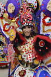 Unieke kostuums met het andere thema van seraong Stock Afbeelding