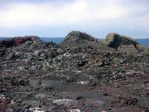 Unieke Lavavormingen in Hawaï stock fotografie