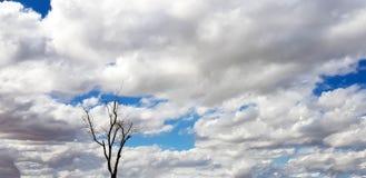 Unieke roze/purpere/blauwe hemel met wolkenvorming Royalty-vrije Stock Afbeelding