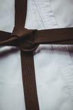 Uniforme do karaté e correia marrom fotografia de stock