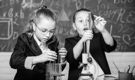 Uniforme scolastico delle ragazze eccitato provando la loro ipotesi Scuola per i bambini dotati Studenti della palestra con appro fotografia stock libera da diritti