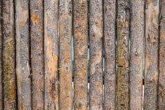 Unik abstrakt färgbild Fotografering för Bildbyråer