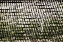 Unik gammal tegelstenvägg med en härlig skugga Arkivbilder