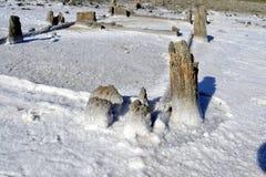 Unik salt sjö Chokrak Arkivfoto