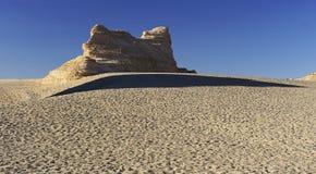 Unik yadan jord ytbehandlar i den Gobi öknen Arkivfoton
