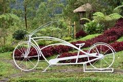 Unika cyklar royaltyfria bilder