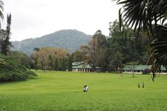 Unika kungliga botaniska trädgårdar i Peradeniya är ansedda som en av de bästa i Asien, som den innehåller en samling av 4000 art Royaltyfri Fotografi