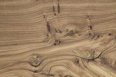 Unikalna drewniana tekstura z kępkami i pęknięciami Obraz Royalty Free
