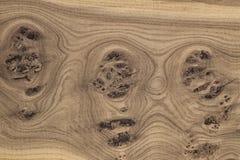 Unikalna drewniana tekstura z kępkami i pęknięciami Fotografia Royalty Free