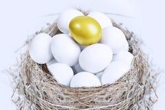 Unikalna złocista jajeczna inwestycja Fotografia Royalty Free