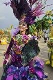 Unikalni kostiumy z tematem inne purpurowe orchidee Obrazy Royalty Free