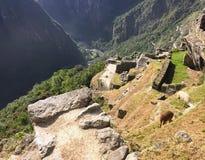 Unikalny i ciekawy widok antyczny inka miejsce Mach Picchu, obrazy royalty free