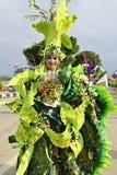 Unikalny kostium z zielonym storczykowym tematem Obraz Stock