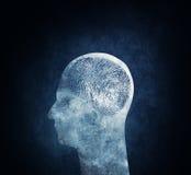 Unikalny mózg obraz royalty free