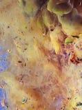 Unikt abstrakt begrepp som desing - målning med färgpulver under vatten Royaltyfria Foton