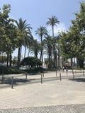 Unikt parkera, sätta på land, sommar, yachter i port av Alicante Arkivfoto