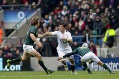 Union Angleterre de rugby de GBR contre l'Afrique du Sud Image stock