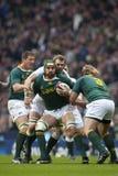 Union Angleterre de rugby de GBR contre l'Afrique du Sud Photographie stock libre de droits