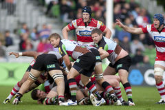 2011 union de rugby d'Aviva Premiership, harlequins v Gloucester, septembre Photo libre de droits