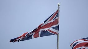 Union Jack British flags in the breeze. Low angle view of Union Jack British flags in the breeze stock video