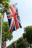Union Jack flags on Mall. Rows of Union Jack flags hanging from trees on Mall, London, England Royalty Free Stock Photos