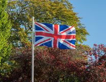 Union Jack or Union Flag flying in strong wind. UK flag Union Jack flying in a strong wind against a background of fall or autumn trees stock photos