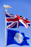 Union Jack & Yorkshire Flag with Sea Gull Royalty Free Stock Image