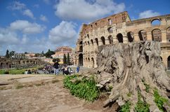 Nature and art in Rome royalty free stock photography