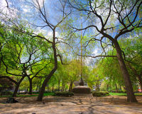 Union Park Square NYC. Spring greenery at landmark Union Square park in New York City Royalty Free Stock Photography