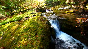 Union River Gorge Cascades. Cascades of the Union River Gorge in Porcupine Mountains Wilderness State Park stock footage