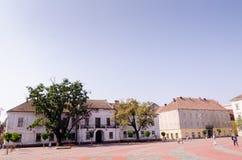 Union Square in der Mitte von Timisoara Stockbild
