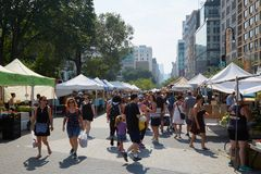 Union Square greenmarket med folk i en solig dag i New York Arkivbild