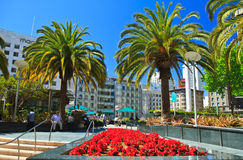 Union Square, San Francisco Royalty Free Stock Photos