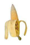 Unique. A banana inside having corn Royalty Free Stock Photography