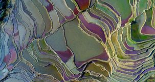 Unique aerial view on colorful rice terraces. stock image