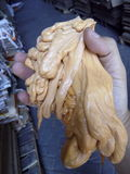 Unique art plastic. Hold in hand Stock Photo