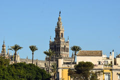 The unique beauty of the Giralda tower never gets unnoticed in Seville. It is the third biggest cathedral in Europe. A masterpiece where its architecture Stock Images