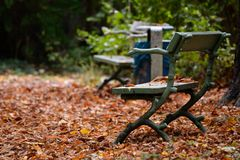 Unique bench in the park Stock Image