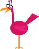 Unique bird. Illustration of unique pink bird Royalty Free Stock Images